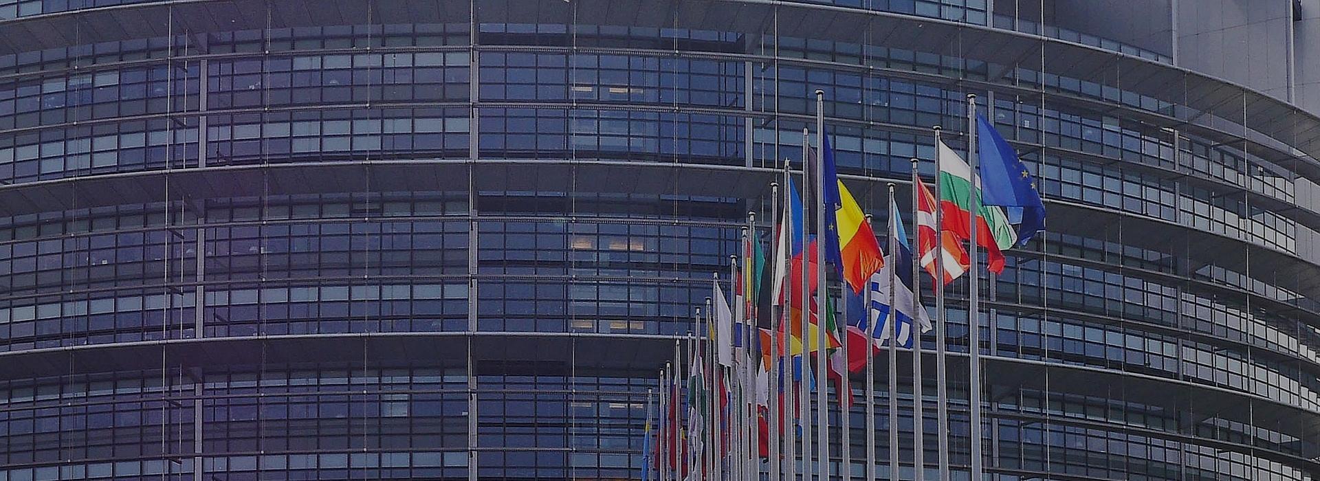 Vuoi conoscere le numerose opportunità che l'Europa propone?
